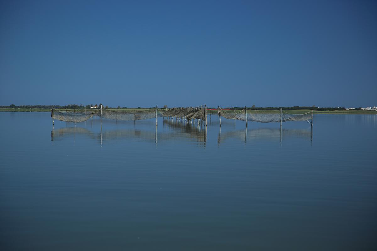 pesca alghi del gargano