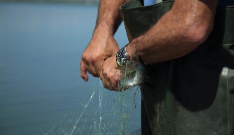 pescatori lesina